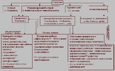 Схема терапии антибиотиками при синусите
