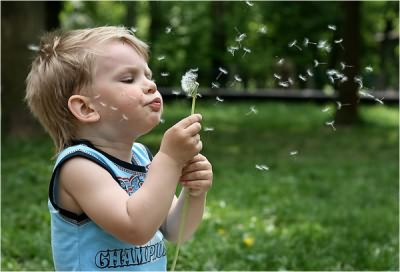 Аллергия - причина температуры