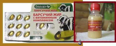 Лечение барсучьим жиром от кашля и бронхита