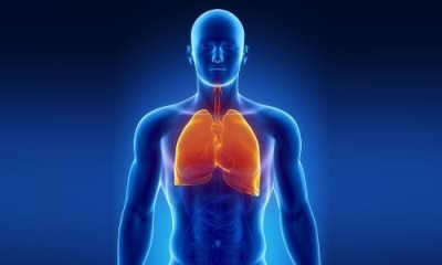Проблема пневмоцистной пневмонии