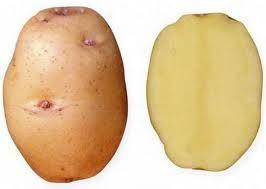 Состав картошки
