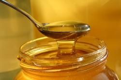 Мед для приготовления сиропа от кашля