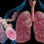Факторы возникновения кашля