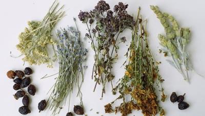 Народные средства для лечения сухого кашля