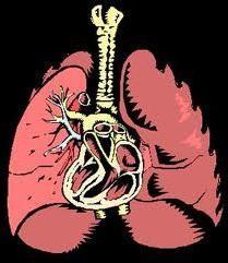 как лечить пневмонию дома