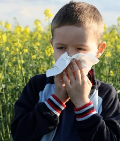 Как вызвать чихание у ребенка