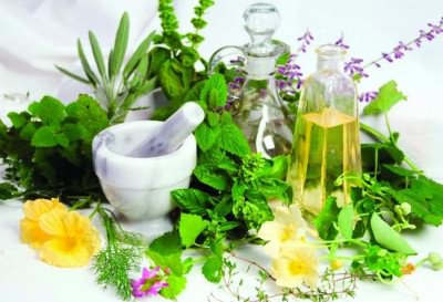 Растения при простуде