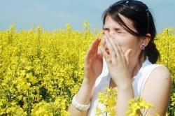 Аллергия - причина бронхита
