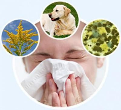 Аллергиякак возбудитель кашля