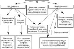 Схема лечебной тактики при кашле