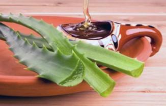 лечение бронхита медом и алоэ