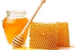 Польза меда при трахеите