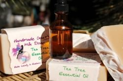 Эфирное масло чайного дерева от насморка