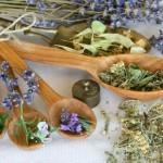 Лечение травами в бане