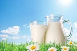 Польза козьего молока при бронхите