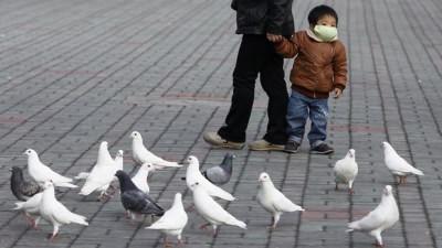 птичий грипп симптомы у человека