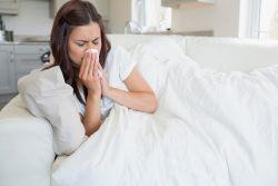 Птичий грипп в россии