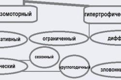 Разновидности ринита