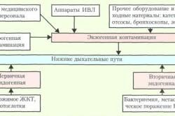 Пути распространения инфекции при нозокомиальной пневмонии