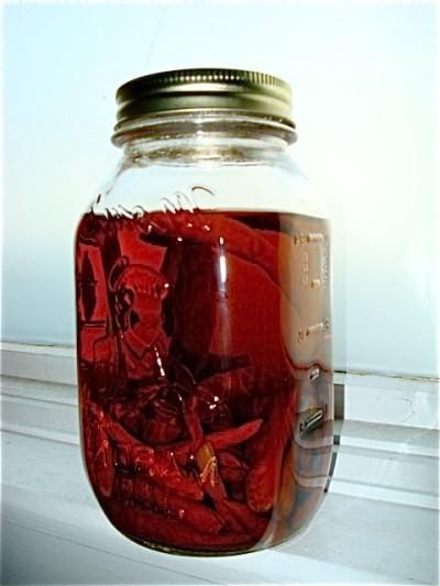 Водка с перцем (рецепт)