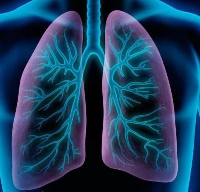 симптомы пневмонии у взрослых с температурой