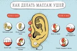 Схема массажа ушей