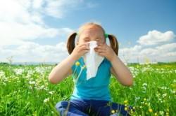 Аллергическая природа затяжного насморка