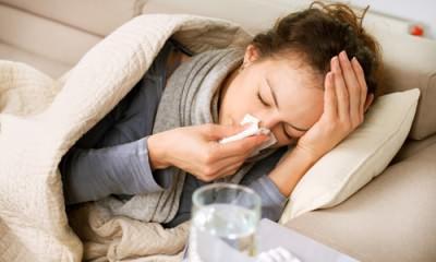 Травы при простуде и гриппе